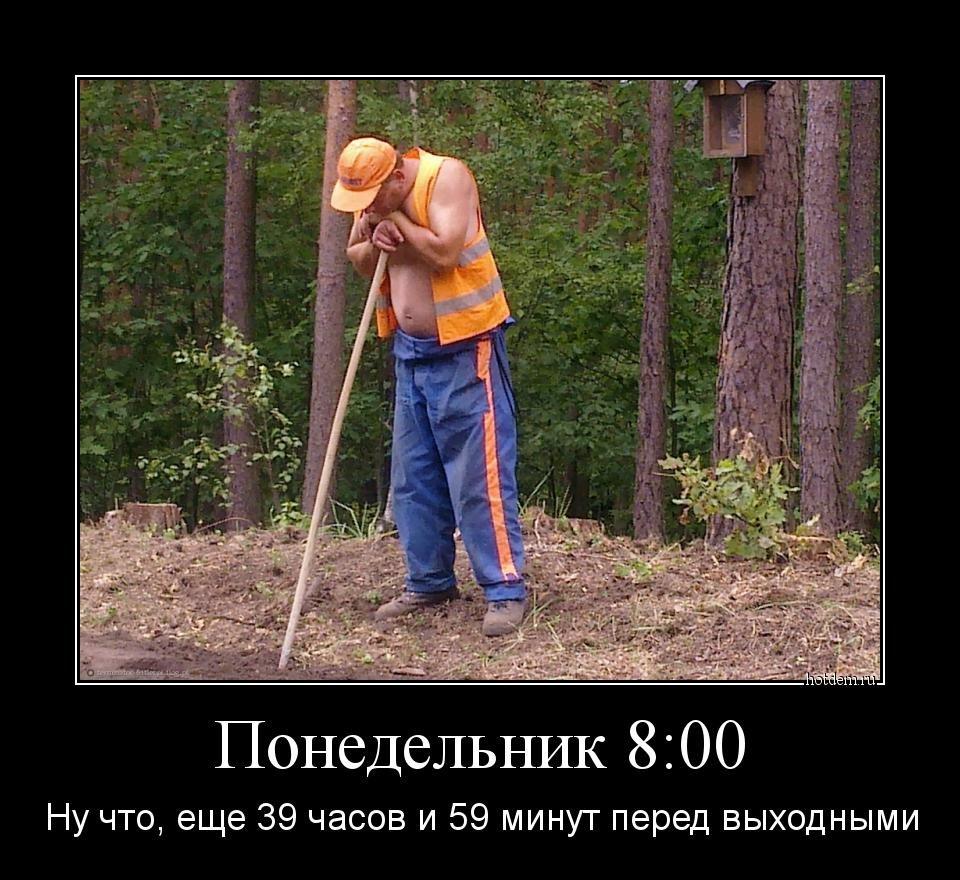 http://s2.uploads.ru/na7wr.jpg