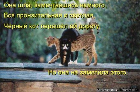 http://s2.uploads.ru/ne3F9.jpg