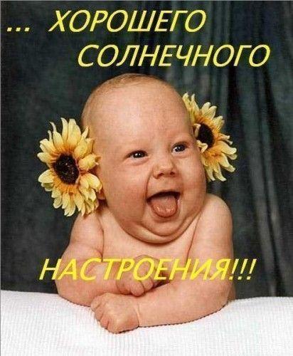 http://s2.uploads.ru/nsF2l.jpg