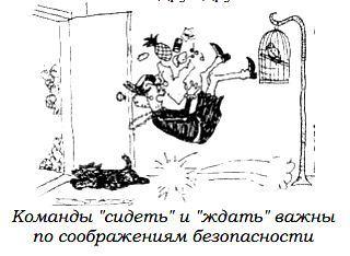 http://s2.uploads.ru/oB6qg.jpg