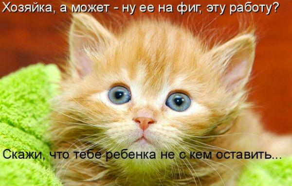 http://s2.uploads.ru/oEgw6.jpg