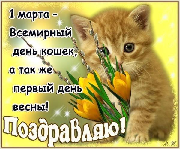 http://s2.uploads.ru/pPFAs.jpg
