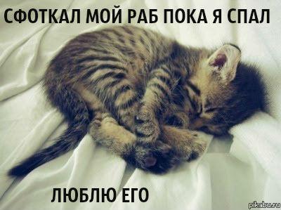 http://s2.uploads.ru/pRw09.jpg