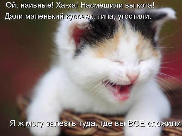 http://s2.uploads.ru/qciTX.jpg