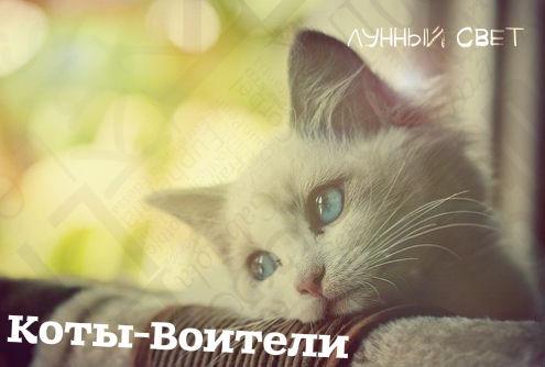 http://s2.uploads.ru/qwY6E.jpg