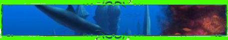 http://s2.uploads.ru/r974g.png