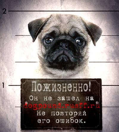 http://s2.uploads.ru/runRj.png