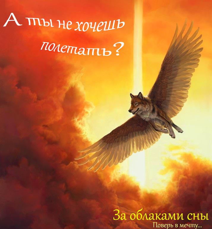 http://s2.uploads.ru/ryFRt.jpg