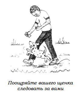http://s2.uploads.ru/rymRq.jpg