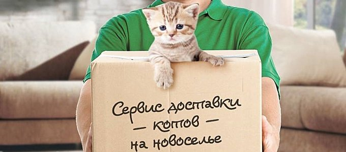 http://s2.uploads.ru/rz0Qb.jpg
