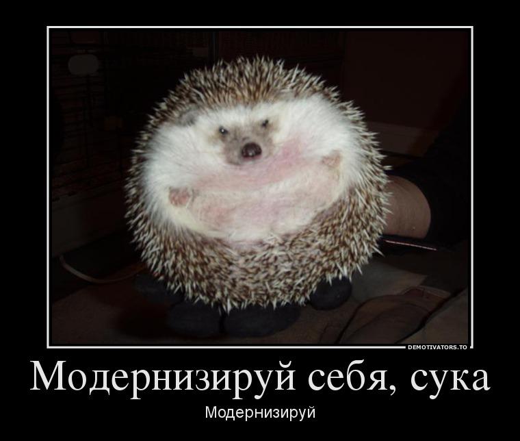 http://s2.uploads.ru/sjYC5.jpg