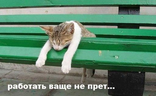 http://s2.uploads.ru/slyHI.jpg
