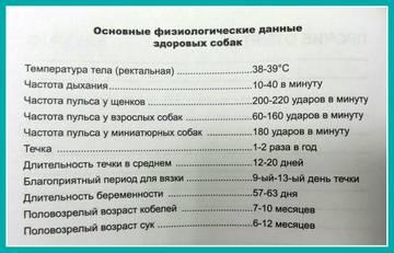 http://s2.uploads.ru/t/0UEAy.jpg
