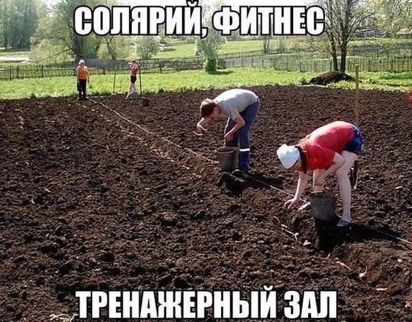 http://s2.uploads.ru/t/19D5L.jpg