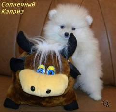 http://s2.uploads.ru/t/1E2zA.jpg