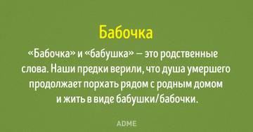 http://s2.uploads.ru/t/1PmHI.jpg