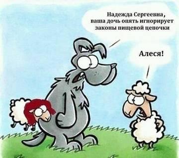 http://s2.uploads.ru/t/1o3eI.jpg