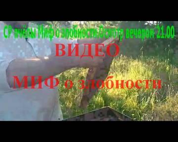 http://s2.uploads.ru/t/2Dgh7.jpg