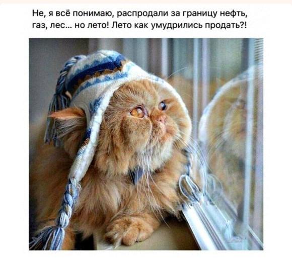 http://s2.uploads.ru/t/2JAmk.jpg