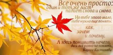 http://s2.uploads.ru/t/2VTRP.jpg