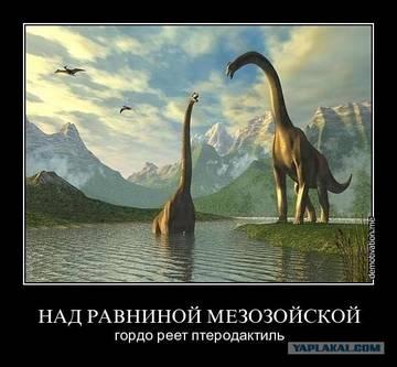 http://s2.uploads.ru/t/3NYBZ.jpg