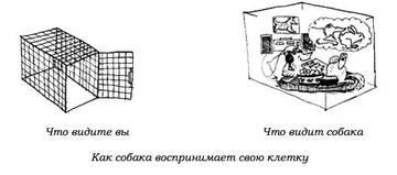 http://s2.uploads.ru/t/3eLbX.jpg
