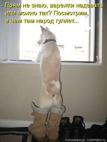 http://s2.uploads.ru/t/3r4OE.jpg