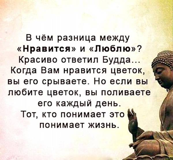 http://s2.uploads.ru/t/3xpba.jpg