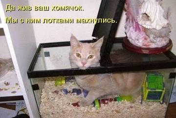 http://s2.uploads.ru/t/405s1.jpg