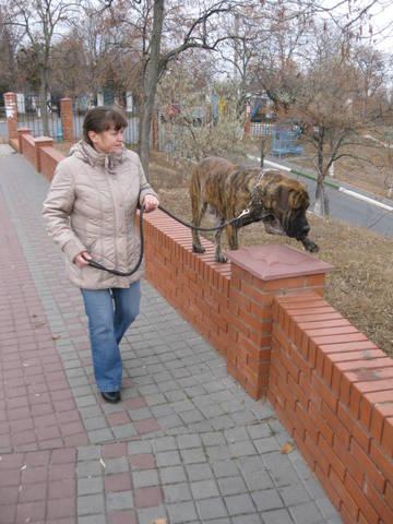 http://s2.uploads.ru/t/46DU1.jpg