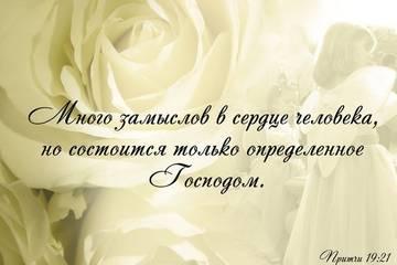 http://s2.uploads.ru/t/53NdY.jpg