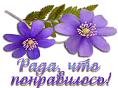 http://s2.uploads.ru/t/5DoxV.png