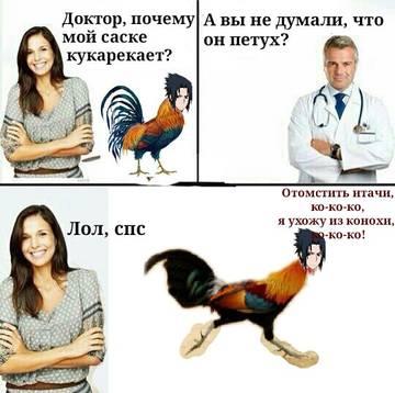 http://s2.uploads.ru/t/652Ad.jpg