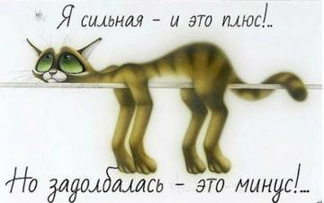 http://s2.uploads.ru/t/69f2j.jpg
