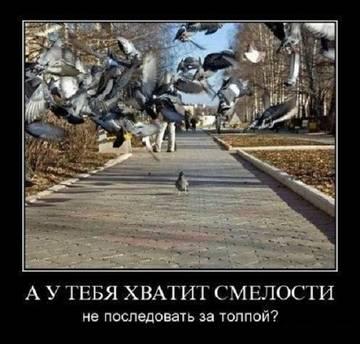 http://s2.uploads.ru/t/6QCrW.jpg