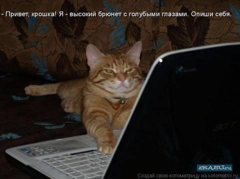 http://s2.uploads.ru/t/720ZT.jpg