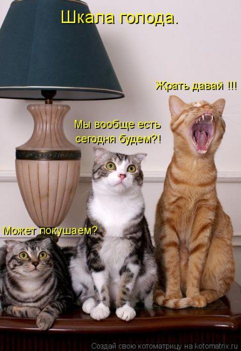 http://s2.uploads.ru/t/74AyV.jpg