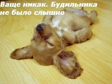 http://s2.uploads.ru/t/7LVsI.jpg