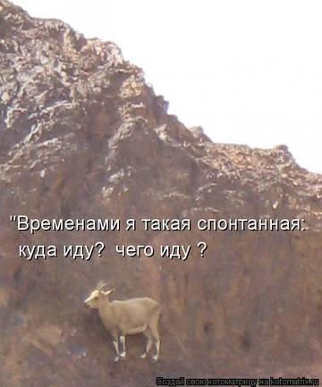 http://s2.uploads.ru/t/7aRZ1.jpg