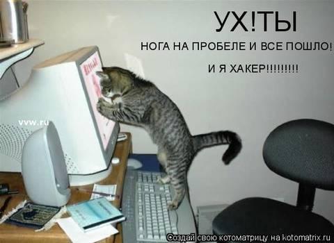 http://s2.uploads.ru/t/83zVY.jpg