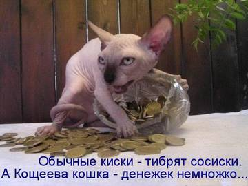 http://s2.uploads.ru/t/8gFVC.jpg