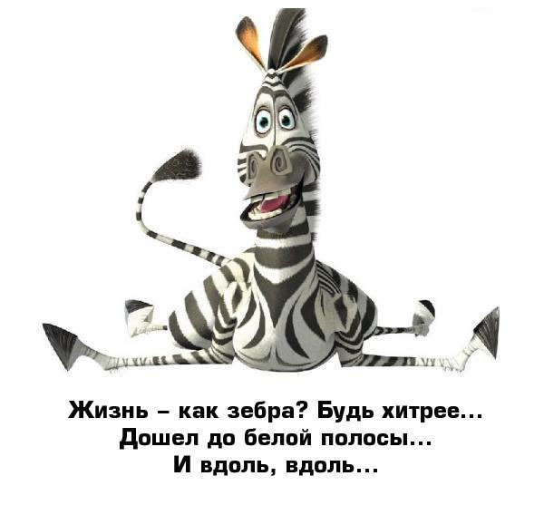 http://s2.uploads.ru/t/8hyqv.jpg
