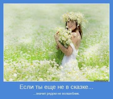 http://s2.uploads.ru/t/8nd7Y.jpg