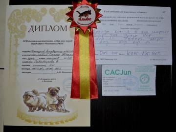 http://s2.uploads.ru/t/9Kacg.jpg