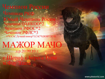 http://s2.uploads.ru/t/9Lsuw.jpg