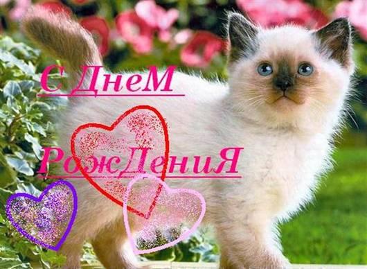 http://s2.uploads.ru/t/9pzBw.jpg