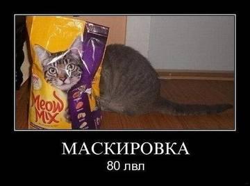 http://s2.uploads.ru/t/9wPfC.jpg