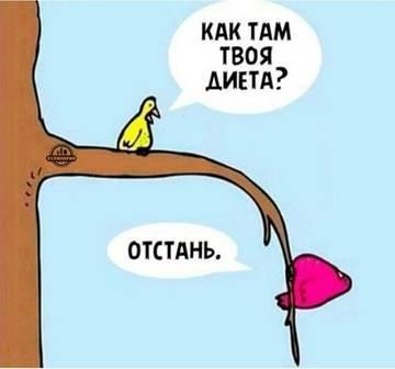 http://s2.uploads.ru/t/AczLG.jpg