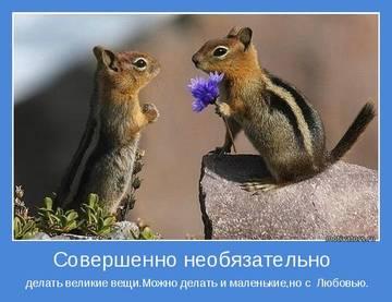 http://s2.uploads.ru/t/AerDf.jpg