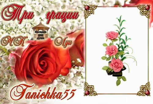 http://s2.uploads.ru/t/C2h9O.jpg